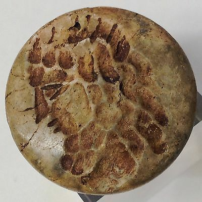Rare Ancient Carved Near Eastern Found Stone Bead Seal 500 Bc (Very Large)
