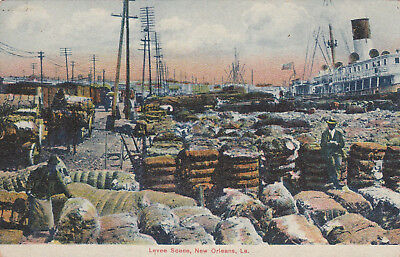 NEW ORLEANS , Louisiana , 1900-10s ; Levee Scene