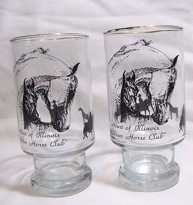 Two Vintage Heart of Illinois ARABIAN HORSE Club Footed Glass Tumblers Mare Foal