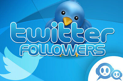 provide 5000+ Twitter Follo 48 Hour Delivery