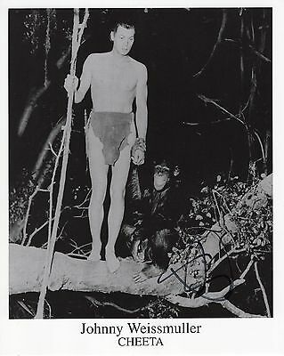 """CHEETA """"autographed"""" 8x10 photo      GREAT POSE WITH TARZAN   Johnny Weissmuller"""