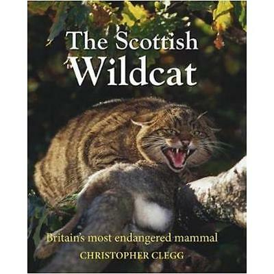 The Scottish Wildcat by Christopher Clegg