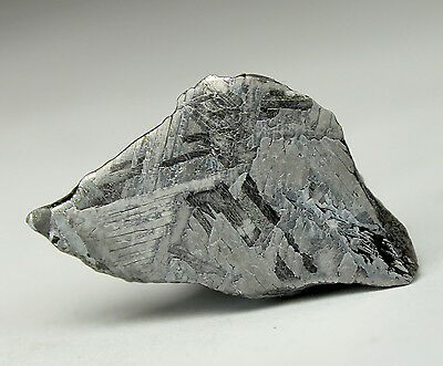 Meteorites - Mundrabilla 12.4g Polished and Etched End Piece