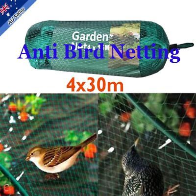 4 x 30m Anti Bird Netting Plant net/Fruit Tree Bird Net Pest Commercial Crops