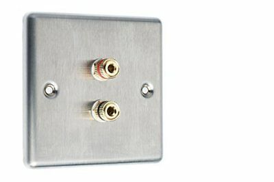 2 Post 1 Gang Surround Sound Speaker Wall Plate Stainless Steel with Gold Posts
