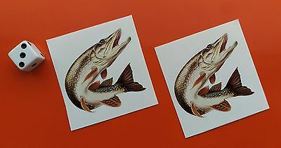Pair of Superb Quality small Pike Stickers 50mm fishing tackle boxes/cars/vans