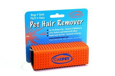 The CarPET Pet Hair Remover Magically Lifts and Gathers Pet Hair Easy To Use