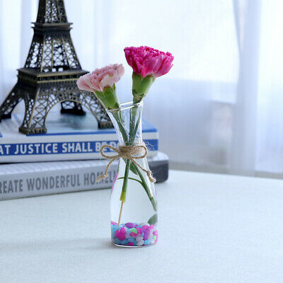 Cafe House Decor Small Fresh Style Folwer Vase Bottle Hydroponic Container