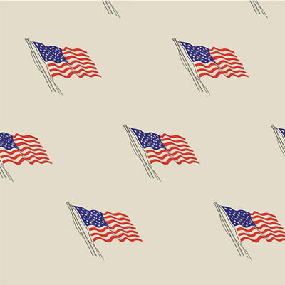 USA Flag Tissue Paper Multi Listing 500x750mm