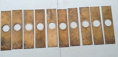 Vintage Brass Push Plates For Doors Lot of 10