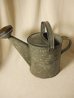 Old Watering Can-Original Sprinkler Head-Double Handle-THINK PLANTER