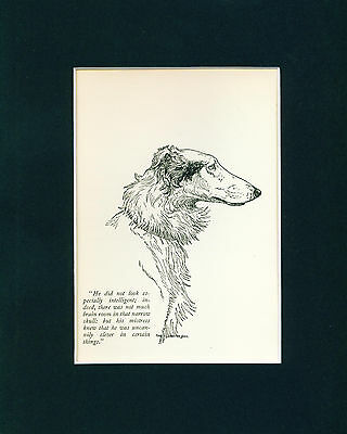 Dog Print 1926 Borzoi Dog Head by Charles Livingston Bull