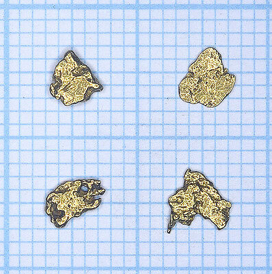 0,310 gramme, 4 pépites d'or naturel de Deadwood creek Gold nugget (776)