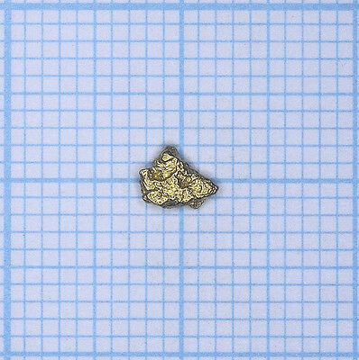 0,146 gramme, pépite d'or naturel d'Idaho Gold nugget (734)