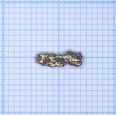 0,225 gramme, pépite d'or naturel de Deadwood creek Gold nugget (742)