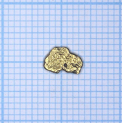 0,275 gramme, pépite d'or naturel de Deadwood creek Gold nugget (743)