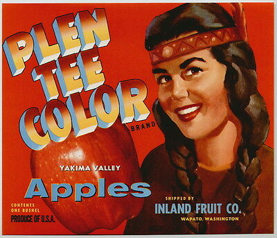 PLEN TEE COLOR Vintage Washington Apple Crate Label r, Indian, AN ORIGINAL LABEL
