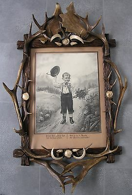 Antique Black Forest Picture Frame Mounted With Antlers & Roses &tusks