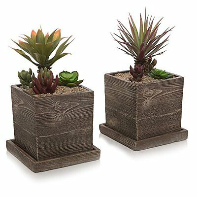 Textured Cement Planters, Flower Pots With Removable Saucers, Set Of 2, Brown