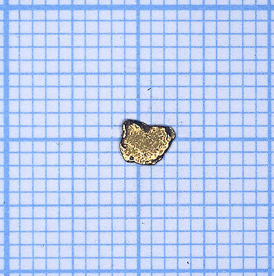 0,063 gramme, pépite d'or naturel de Deadwood creek Gold nugget (833)