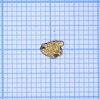 0,058 gramme, pépite d'or naturel de Deadwood creek Gold nugget (832)