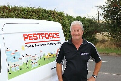 Pest Control Business for sale in Luton