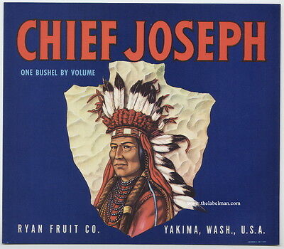 CHIEF JOSEPH Vintage Washington Apple Crate Label Indian, **AN ORIGINAL LABEL**