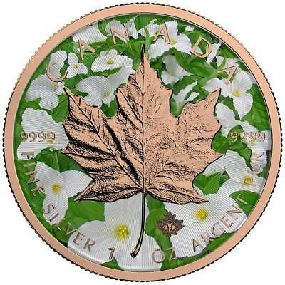 Canada 2017 5$ Maple Leaf 1oz Spring Rose Gold Coin PRE-SALE