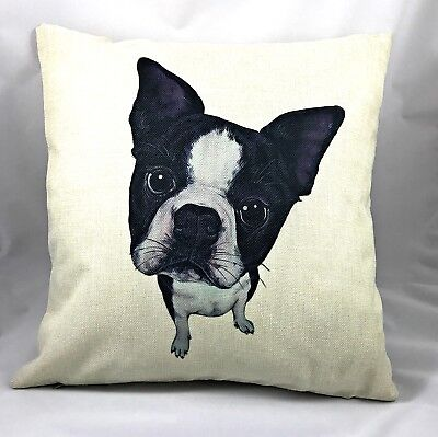Try To Resist The Face ~ Boston Terrier Throw Pillow (With Insert)