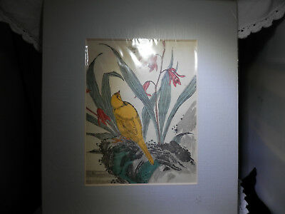 Japanese coloured print finch, 18th-19th Century