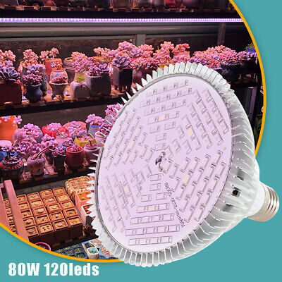 1000W LED Grow Light Plant Veg Flower Bloom Full Spectrum Lamp  Greenhouse Garde