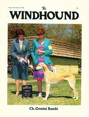4 Dog Magazines The Windhound 1984 + 1989 Whippet Saluki Cover Out Of Print