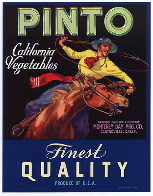 PINTO Vintage Castroville Vegetable Crate Label, Cowboy Horse, AN ORIGINAL LABEL