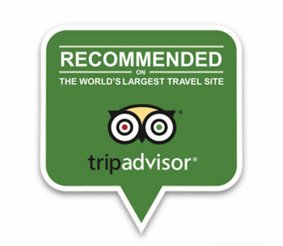 2017 TripAdvisor Recommended Window Sticker Decals Limited Edition Trip Advisor