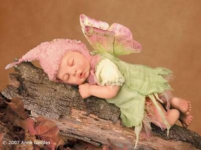 Anne Geddes Woodland Fairy Doll Sculpted By Laura Tuzio Ross Limited #686 Rare