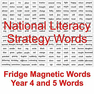 Magnetic National Literacy Strategy Words Years 4 & 5