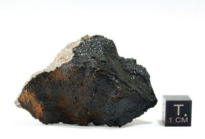 Serra Pelada Meteorite (New Eucrite Fall from Brazil) **First time on ebay**
