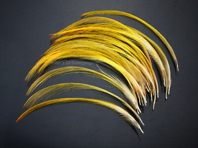 Golden Pheasant Crest Feathers Natural Fly tying ;over 9cm 25 pcs,C20105