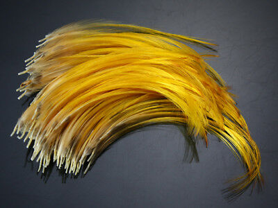 Golden Pheasant Crest Feathers Natural Fly tying ;over8 cm 100 pcs,C20104