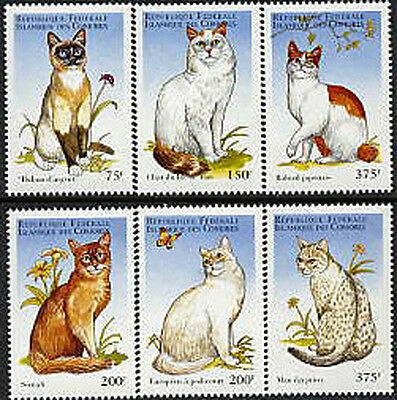 Comoro Is, Sc #817-22, MNH, 1998, Topical Stamps, Cats, 275-4