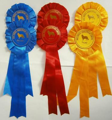 6 x Horse show rossette badges 1st, 2nd, 3rd .Hill House Equestrian Centre
