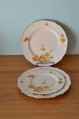 Vintage Alfred Meakin  3 x plates Banbury England fine china Autum leaves orange