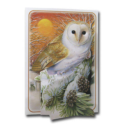 Christmas Owl - Pictoria Press 3D Pop Up Greeting Card - Robins - Birds - Wreath