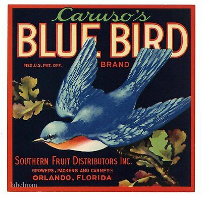 BLUE BIRD, Orlando Florida Label *AN ORIGINAL 1930's CITRUS LABEL*  577