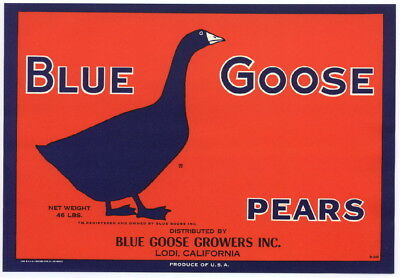 BLUE GOOSE Vintage Lodi, CA Pear Crate Label Bird, Waterfowl, AN ORIGINAL LABEL