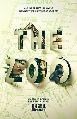 The Zoo poster   -  11 x 17 inches - Animal Planet poster