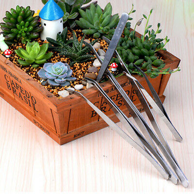 Set of 5Pcs Stainless Landscape Anti-Static Bonsai Tweezer Gardening Tool