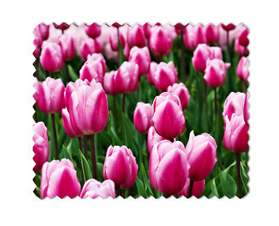 Tulips Lens Sunglasses  Eye Glasses Cleaning Cloth