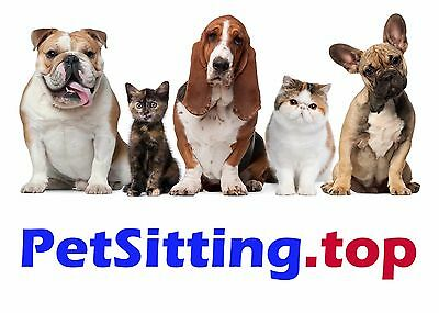 PetSitting.top Domain Name for TOP PET SITTING Local Services Website Forum Blog