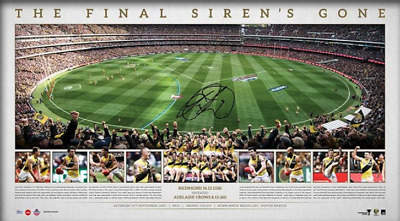 Richmond Tigers 2017 AFL Premiers Signed MCG Ground Shot Panoramic UNFRAMED $349